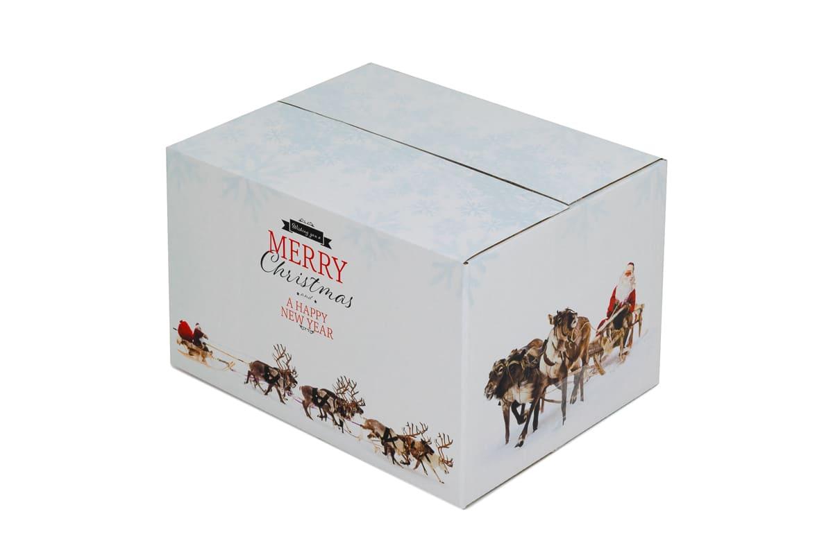 Kerstdoos wit Rudolph - 350 x 315 x 170mm